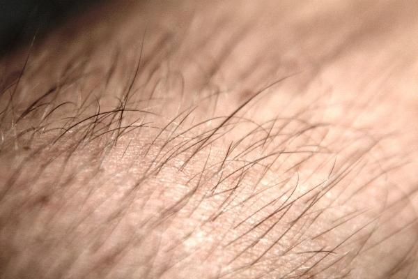 Жопа в волосах